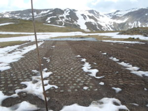 Plate bandes juste sorties de la neige