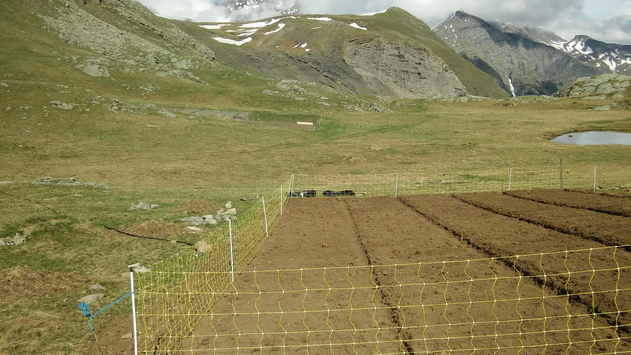 Travail du sol et préparation des plate-bandes